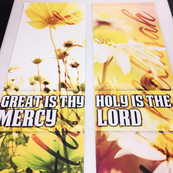 aaa-spring-2x6-banners.jpg
